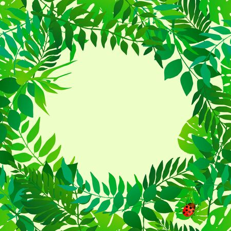 Fresh green leaves circular border frame. Natural botanic round frame.  Vector illustration for your graphic design.