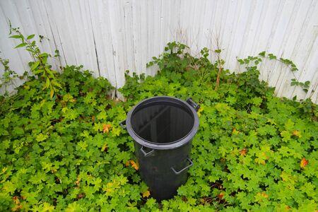 wasser: M�lltonne gef�llt mit Wasser im Gr�nen