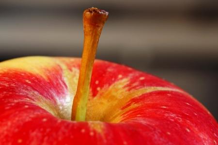 stipe: Apple stem Closeup