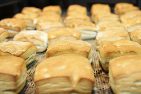 Freshly baked  buns on a baking tray in a industrial bakery Stock Photo - 16630377