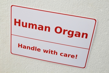 Transport box for organ transplantation Stock Photo - 18228282