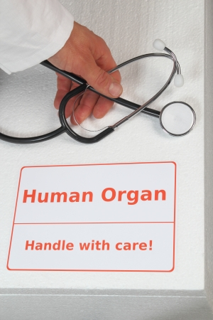 Box for organ transplantation with hand of a doctor photo