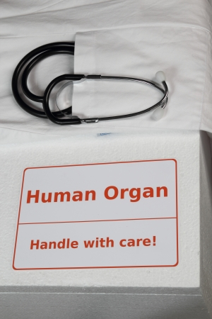 donacion de organos: Caja de órganos humanos Foto de archivo
