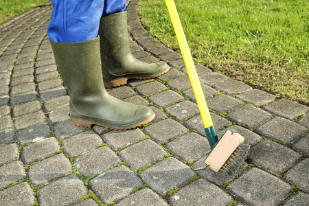 A Gardener  scratching moss out of paving stones Stockfoto
