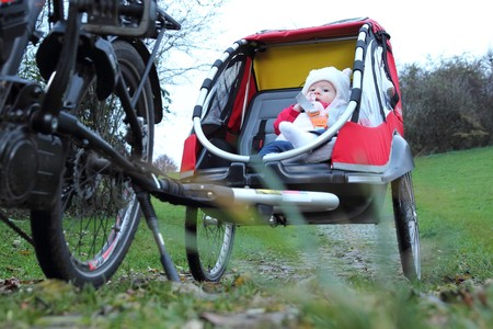 A Baby in a child bike trailer photo