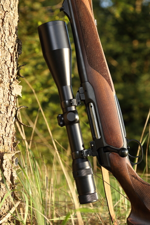 A Hunting rifle with scope leaning on a tree photo