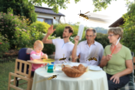 plage: A Eating Family with Wasp Plage