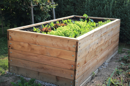 cama: Una cama Criado en un jardín