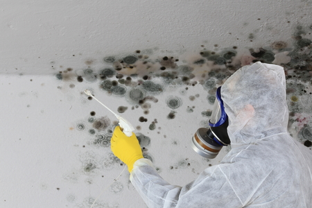 A Man removing Mold fungus with respirator mask Reklamní fotografie - 92859850