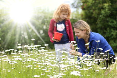 A Flower meadow in front of a Mother with heir daughter Imagens