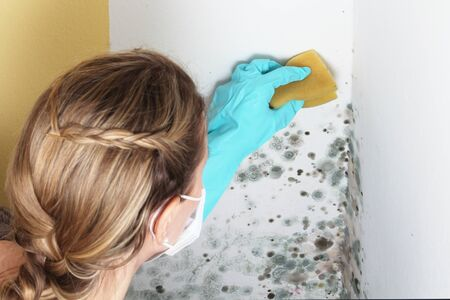 A Woman removes mold from a wall