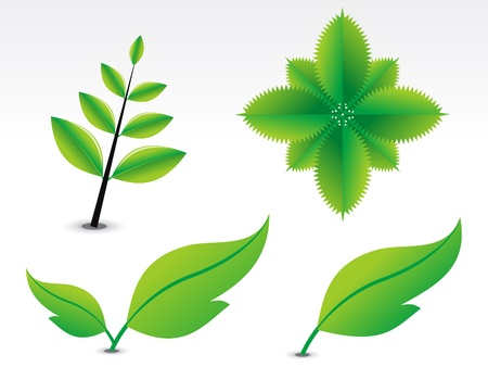 tea leaf: abstract green leaf vector illustration