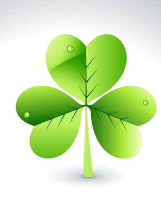four leafed: abstract glossy green clover vector illustration  Illustration