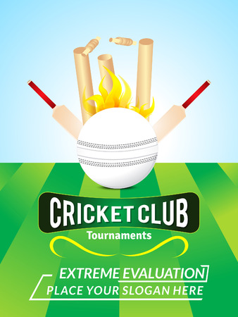 cricket stump: abstract cricket background with ball vector illustration Illustration
