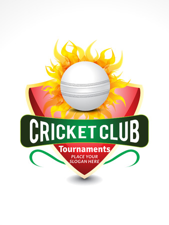 cricket banner background with flame vector illustration