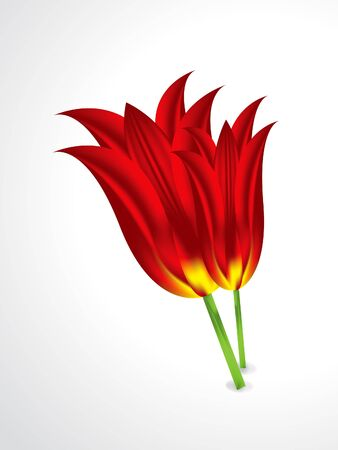 tulips in green grass: abstract isolated vector flower illustration
