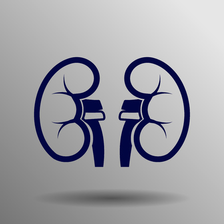 nephrology: Kidneys icon blue on a gray background