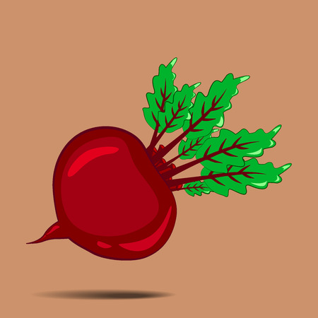 RED Beet. Isolated vegetables on white background