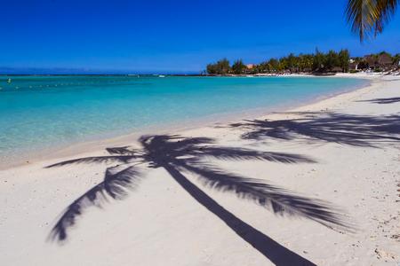 Tropical beach. Shade of palm trees, blue ocean, white sand. Stock Photo