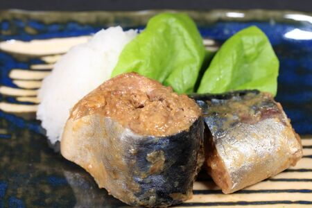 Mackerel simmered in miso, Japanese food