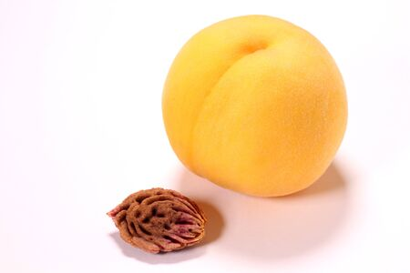 Golden peach and seed on white background