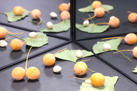 Ginkgo biloba fruits and leaves reflecting in the mirror Archivio Fotografico