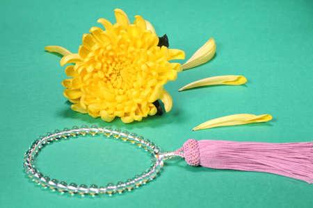 Yellow chrysanthemum flower and japanese Rosary
