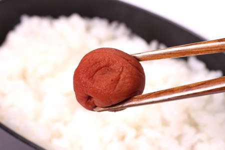 Eating pickled plum of Japanese hinomaru bento Zdjęcie Seryjne