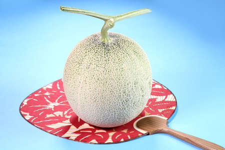 Muskmelon and japanese fan on blue background