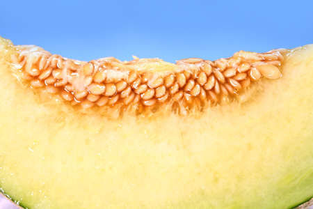 Cut melon close up on blue background