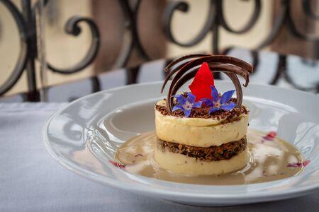 Tiramisu dessert served on a white plate on an unfocused background