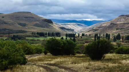 Valley of green and fresh grass, many bushes and a beautiful tree to the left of the photograph. In the background you can see the mountains, poplars and a sky covered with clouds. Argentina, Patagonia