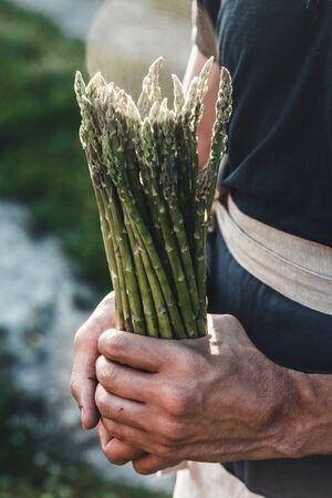 Green asparagus kept in men's hands
