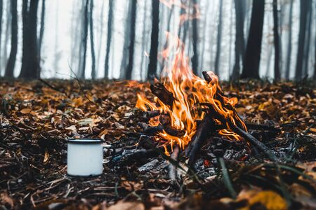 Making coffee at the stake. Make coffee or tea on the fire of nature. Burned fire. A place for fire. Ashes and coal. Banque d'images - 138171880