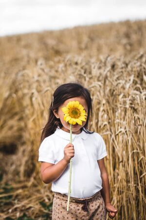 Happy little girl smelling a sunflower on the field . Stock fotó