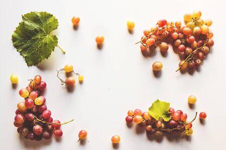 与在白色隔绝的叶子的成熟红色葡萄