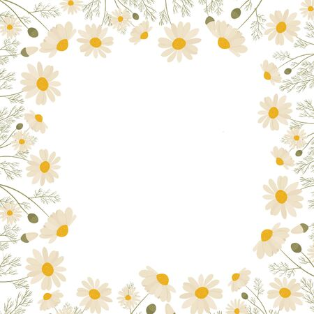 Chamomile frame isolated on white background. Vector illustration of white daisy flowers. Design for herbal tea, natural cosmetics, health care products, aromatherapy, homeopathy.
