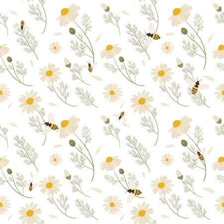 Chamomile seamless pattern. Vector illustration of white daisy flowers. Design for herbal tea, natural cosmetics, health care products, aromatherapy, homeopathy.