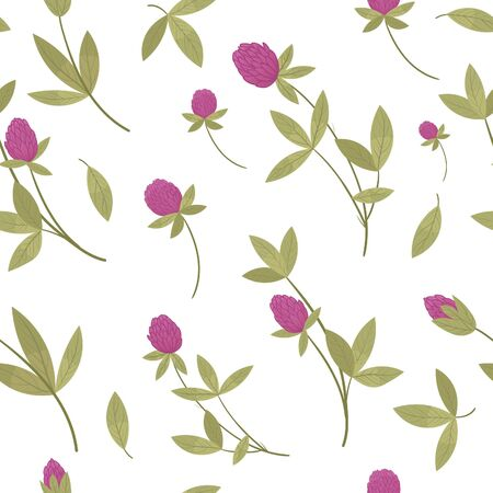 Red or pink clover or Trifolium repens, wild flowers and medicinal herbs. Design for herbal tea, natural cosmetics, perfume, health care products, homeopathy, aromatherapy. With place for text. Ilustração