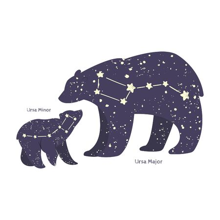 Ursa major and ursa minor. Big bear and little bear constellation in the night starry sky. Vector illustration
