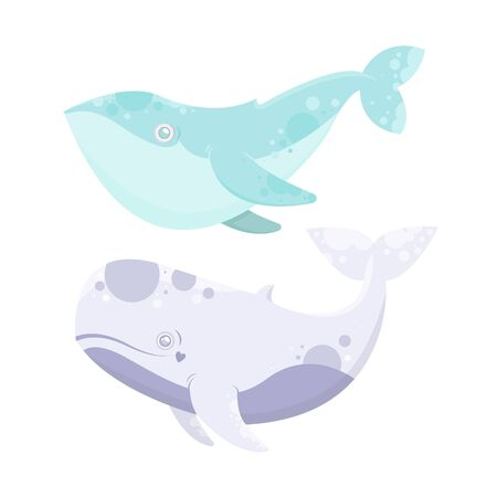 Vector sea animal. Little animal whale. Cartoon illustration of marine life objects for your design. Isolated elements for kids book decoration, postcard, educational game, sticker.