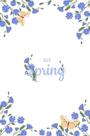 Spring greeting card chicory flowers. Vector layout decorative greeting card or invitation design background.