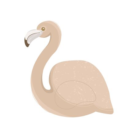 Pink pastel flamingo vector illustration isolated on white background. 向量圖像