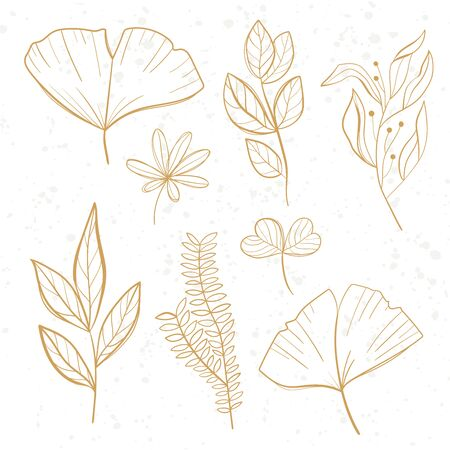 Tropical leaves set. Palm, fan palm, monstera, banana leaves in line style. Sketches of tropical leaves for design.