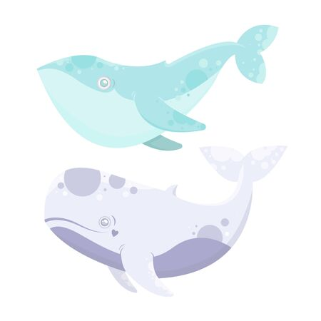 sea animal whale. Cartoon illustration of marine life objects for your design. Isolated elements for kids book decoration, postcard, educational game, sticker.