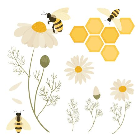 Bees and flowers chamomile. Save The Bees Иллюстрация