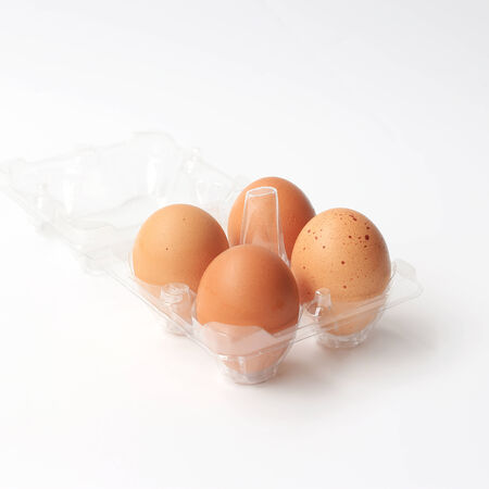 Plastic egg on a white background  photo