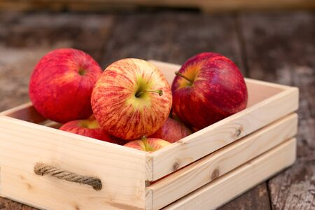 wooden crate: Fresh and delicious red Ambrosia apples in a wooden crate Stock Photo