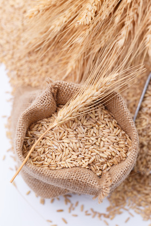 Pearl barley in sack bags Stok Fotoğraf