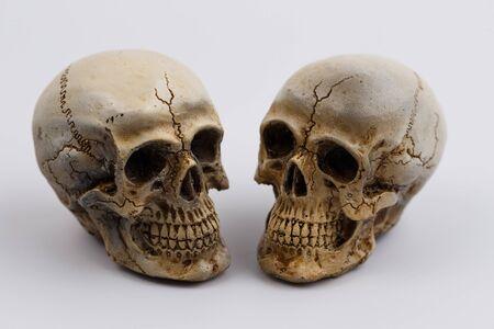menselijke schedel geïsoleerd op een witte achtergrond Stockfoto